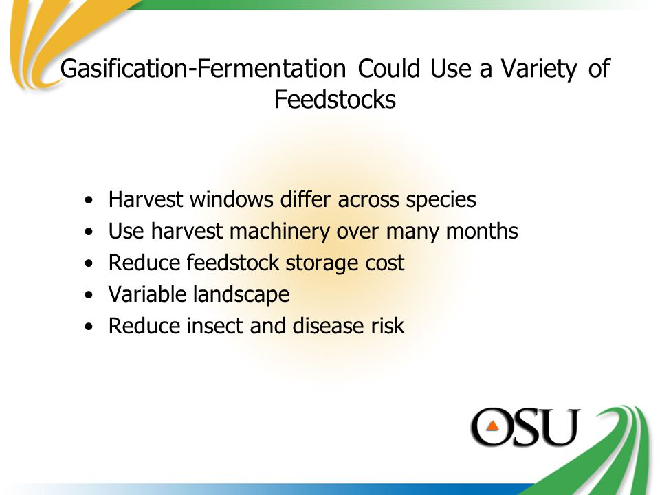 Gasification-Fermentation Could Use a Variety of Feedstocks Harvest windows differ across species Use harvest machinery over many months Reduce feedstock storage cost Variable landscape Reduce insect and disease risk