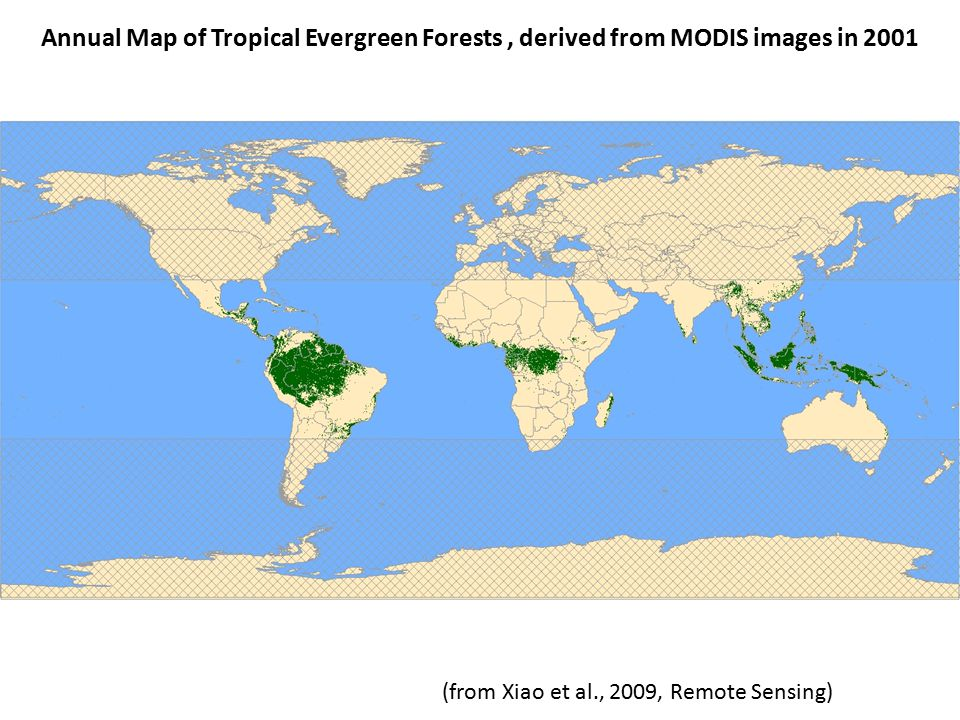 Annual Map of Tropical Evergreen Forests, derived from MODIS images in 2001 (from Xiao et al., 2009, Remote Sensing)