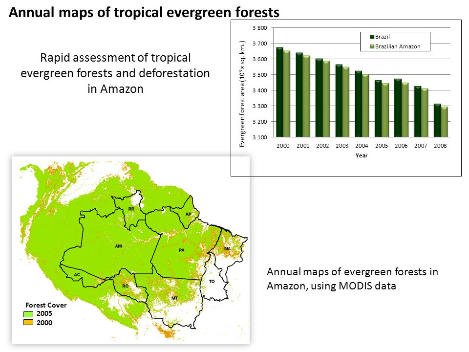 2005 2000 Forest Cover Annual maps of evergreen forests in Amazon, using MODIS data Rapid assessment of tropical evergreen forests and deforestation in Amazon Annual maps of tropical evergreen forests