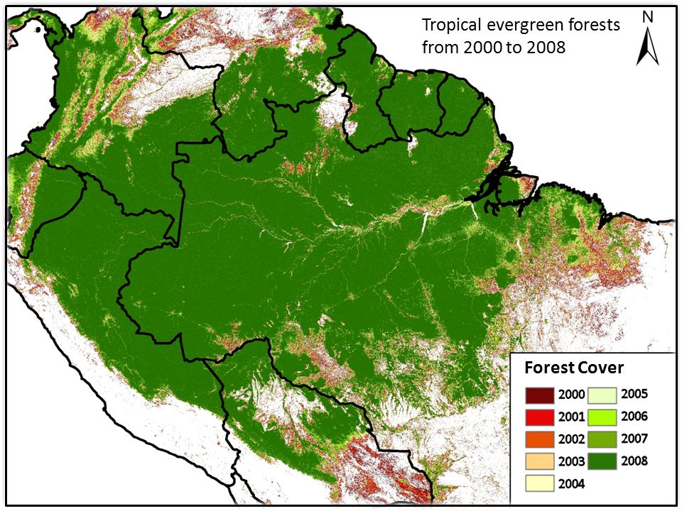 Forest Cover Tropical evergreen forests from 2000 to 2008