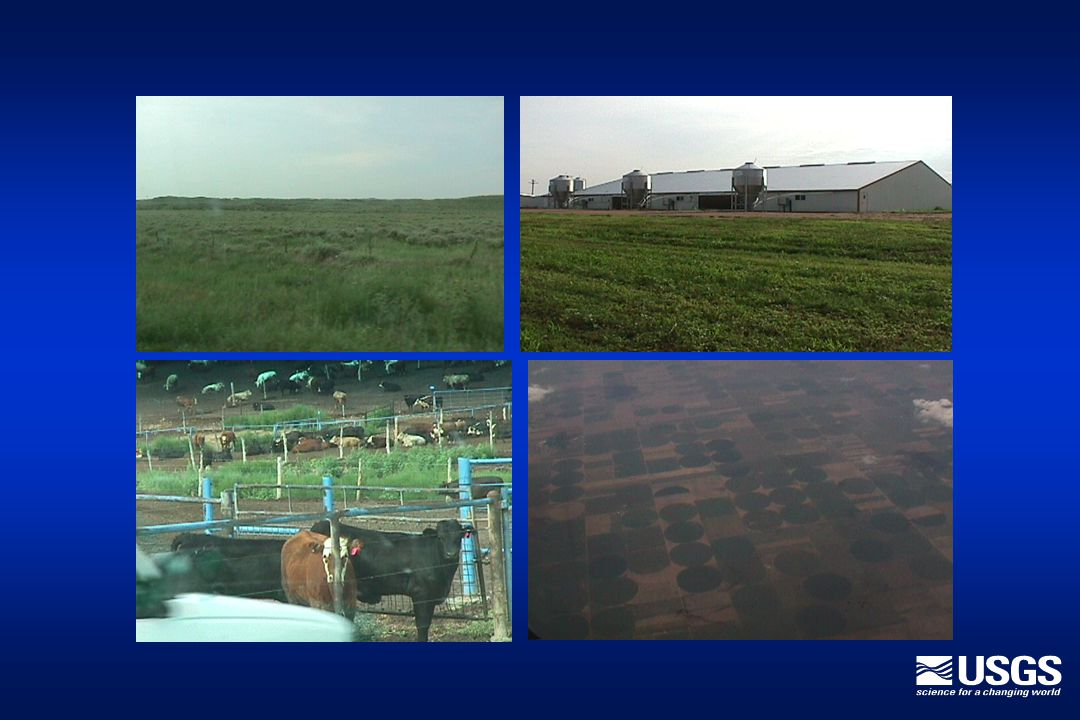 Harvested Acres (Oklahoma Portion) Wheat2,600,000 acres Corn 800,000 Sorghum 700,000 Hay 300,000 Other 65,000