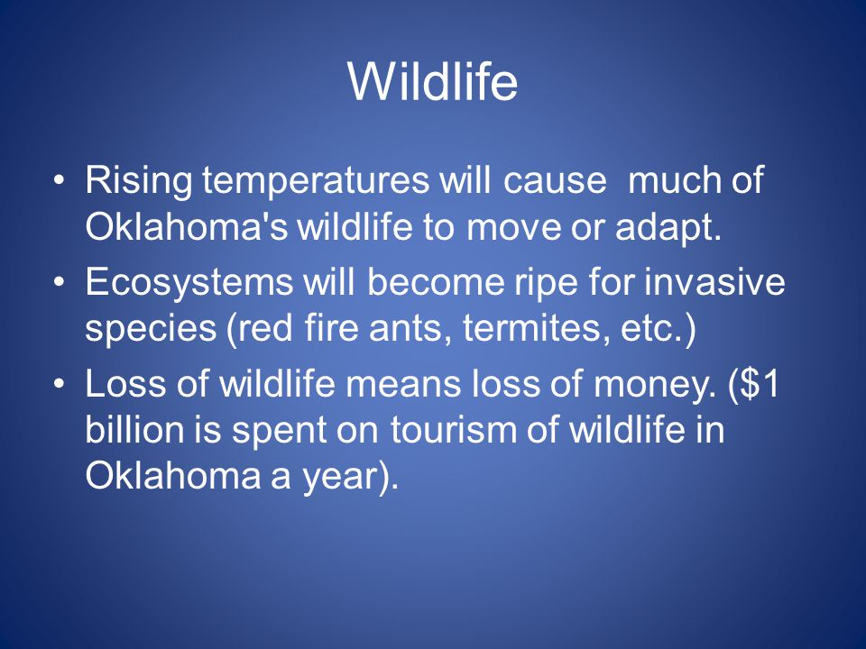 Wildlife Rising temperatures will cause much of Oklahoma's wildlife to move or adapt. Ecosystems will become ripe for invasive species (red fire ants,
