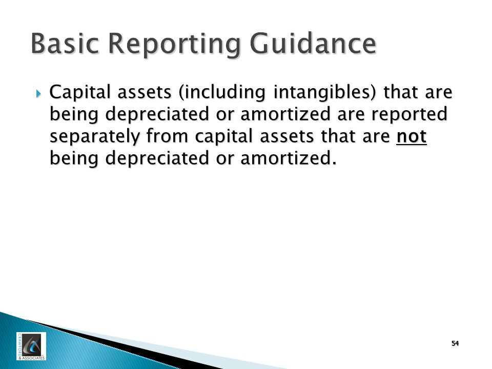 54 Basic Reporting Guidance  Capital assets (including intangibles) that are being depreciated or amortized are reported separately from capital assets that are not being depreciated or amortized.