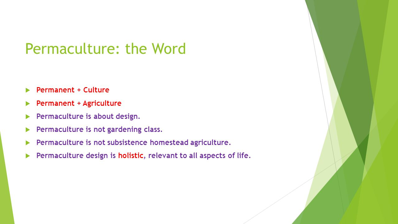 Permaculture: the Word  Permanent + Culture  Permanent + Agriculture  Permaculture is about design.