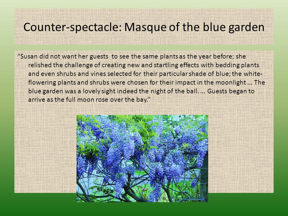 "Counter-spectacle: Masque of the blue garden ""Susan did not want her guests to see the same plants as the year before; she relished the challenge of c"
