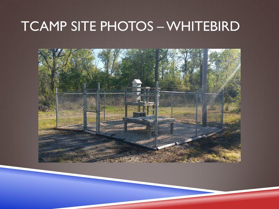 TCAMP SITE PHOTOS – WHITEBIRD