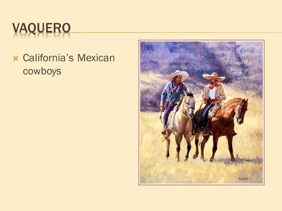  California's Mexican cowboys
