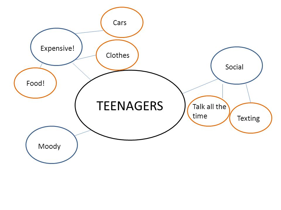 TEENAGERS Moody Expensive! Social Talk all the time Texting Cars Clothes Food!
