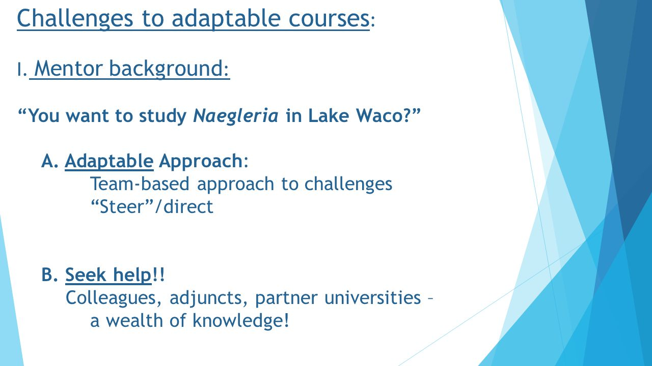 Challenges to adaptable courses : I.