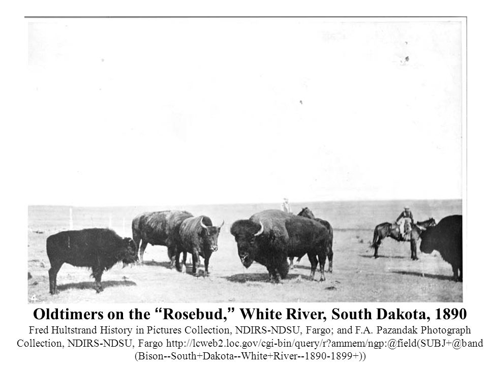 "Oldtimers on the "" Rosebud, "" White River, South Dakota, 1890 Fred Hultstrand History in Pictures Collection, NDIRS-NDSU, Fargo; and F.A. Pazandak Pho"
