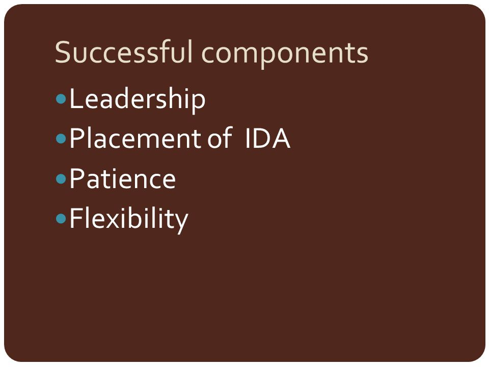 Successful components Leadership Placement of IDA Patience Flexibility