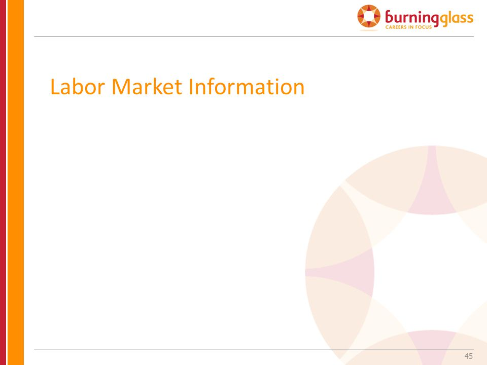 45 Labor Market Information