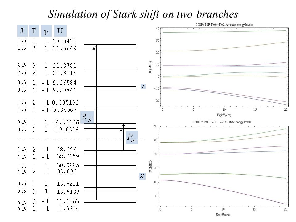 Simulation of Stark shift on two branches
