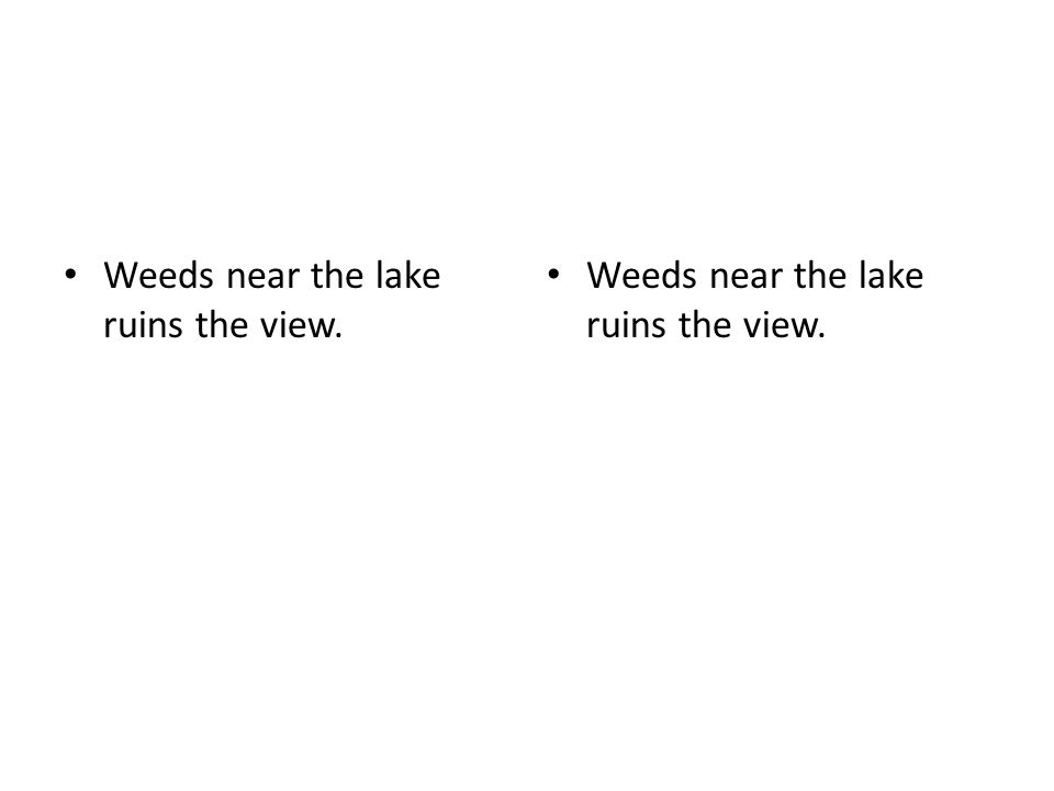 Weeds near the lake ruins the view.