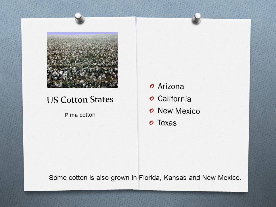 US Cotton States o Arizona o California o New Mexico o Texas Pima cotton Some cotton is also grown in Florida, Kansas and New Mexico.