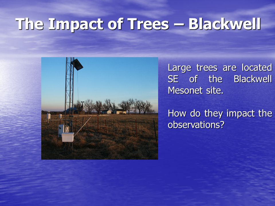 The Impact of Trees – Blackwell Trees toward the SW and SE reduce the average (SW and SE) wind speed by more than 50% compared to the statewide average.