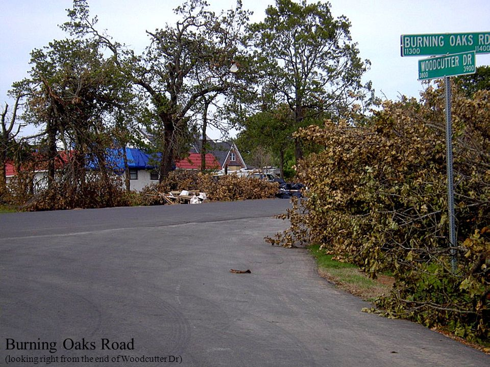 Burning Oaks Road (looking right from the end of Woodcutter Dr)