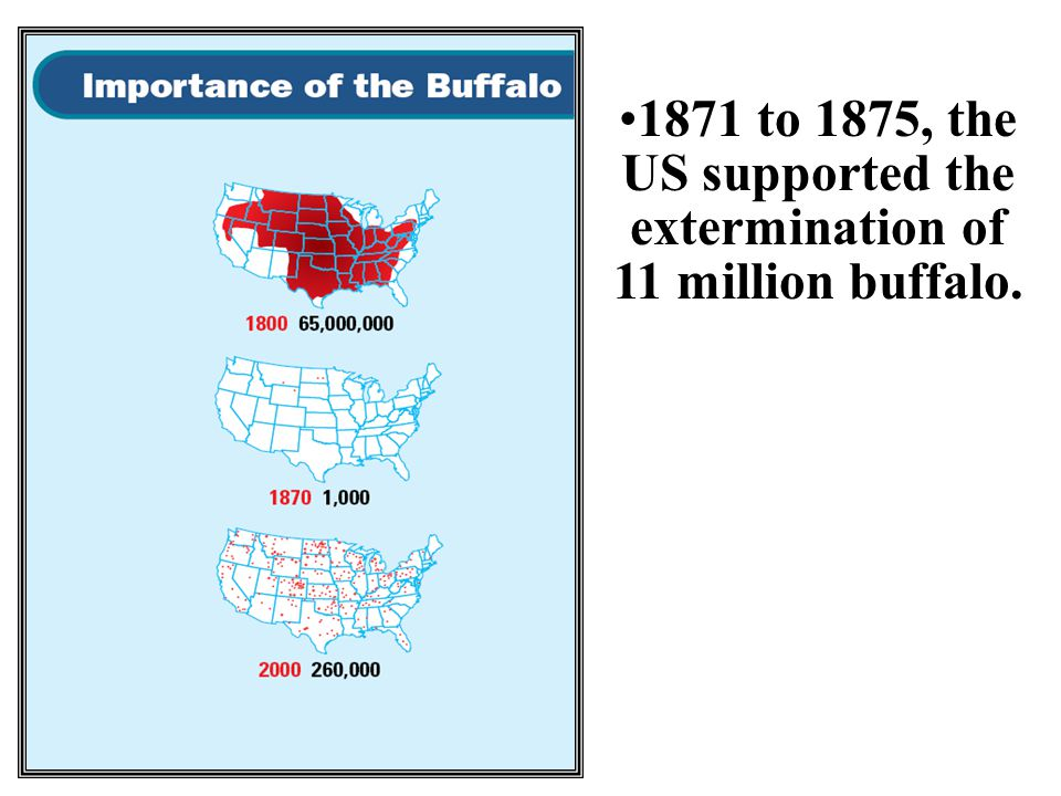 1871 to 1875, the US supported the extermination of 11 million buffalo.