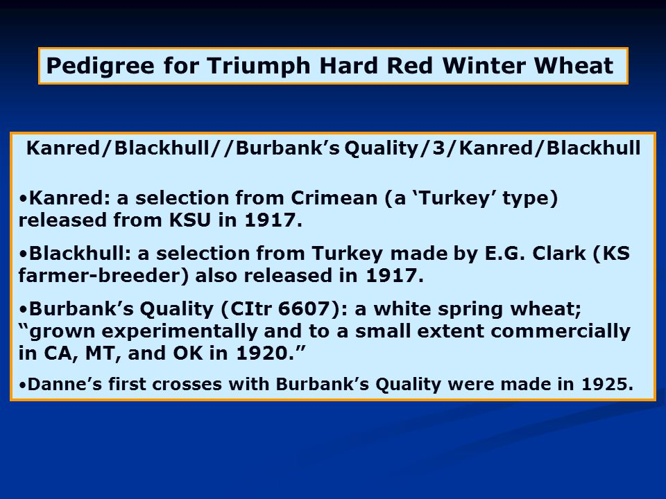 Pedigree for Triumph Hard Red Winter Wheat Kanred/Blackhull//Burbank's Quality/3/Kanred/Blackhull Kanred: a selection from Crimean (a 'Turkey' type) r