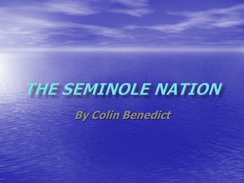 - 1600 lived in Georgia, Alabama, South Carolina and Florida - 1600 lived in Georgia, Alabama, South Carolina and Florida - Today the Seminole live in Florida and Oklahoma - Today the Seminole live in Florida and Oklahoma -Lived in houses called Chickees -Lived in houses called Chickees