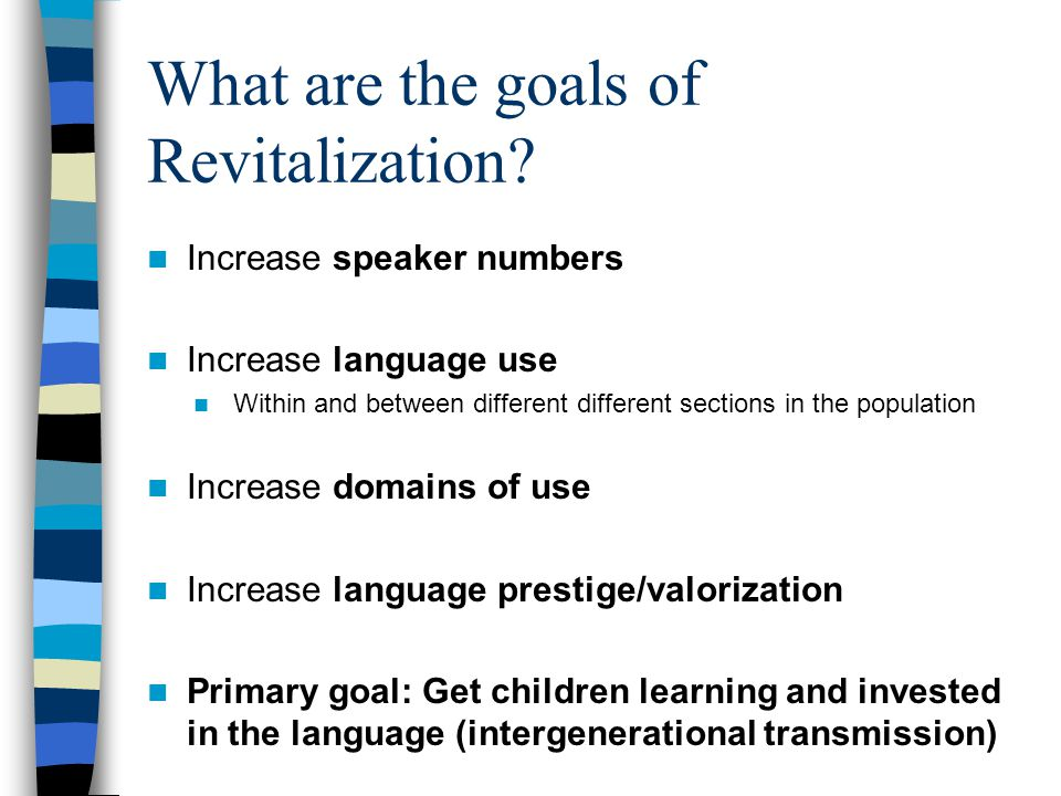 What are the goals of Revitalization.