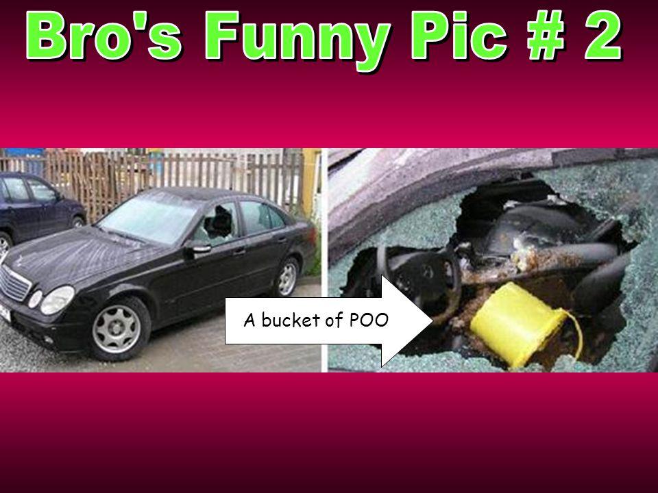 A bucket of POO