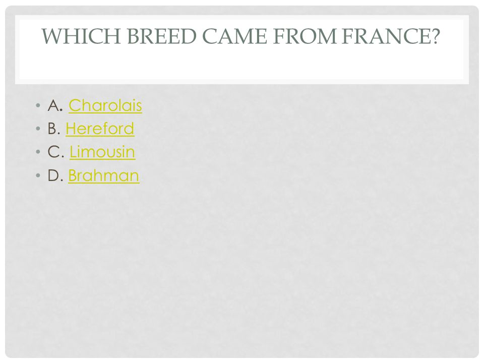 CAN YOU NAME THE BREED 1.Hereford 2.Polled Hereford 3.Charolais 4.Brahman