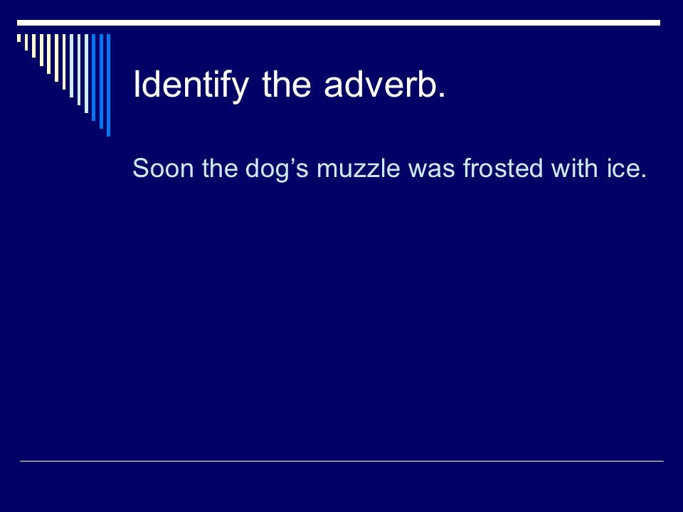 Identify the adverb. Soon the dog's muzzle was frosted with ice.