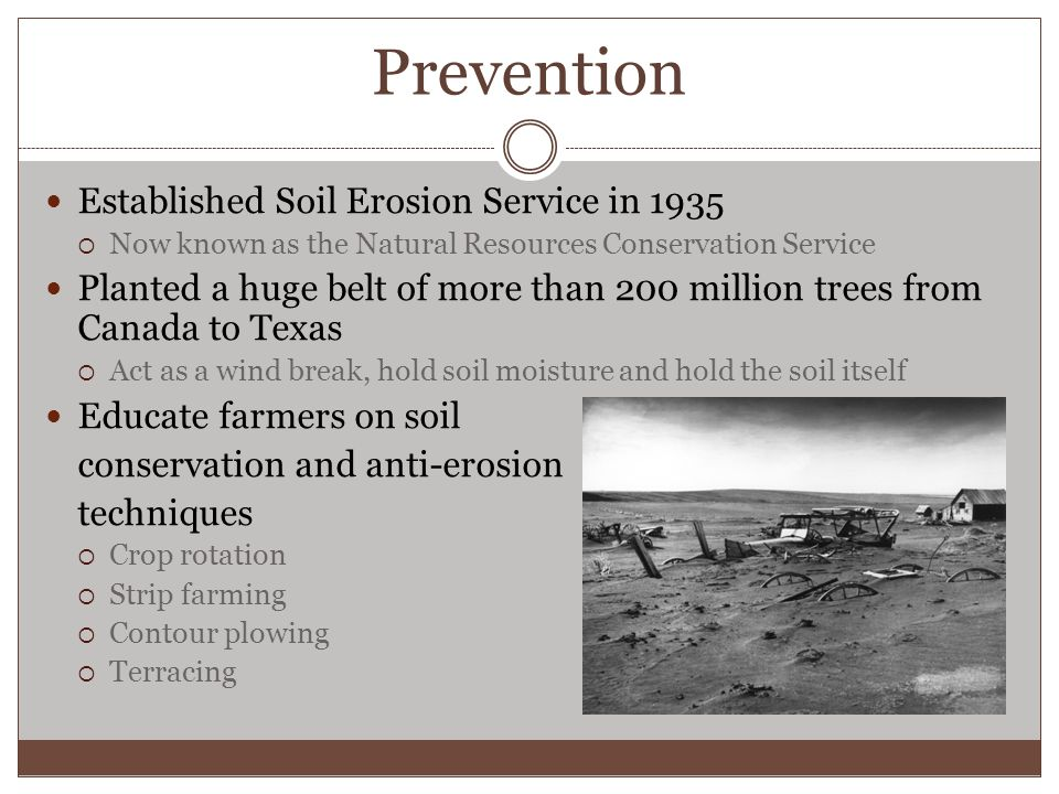 Prevention Established Soil Erosion Service in 1935  Now known as the Natural Resources Conservation Service Planted a huge belt of more than 200 million trees from Canada to Texas  Act as a wind break, hold soil moisture and hold the soil itself Educate farmers on soil conservation and anti-erosion techniques  Crop rotation  Strip farming  Contour plowing  Terracing