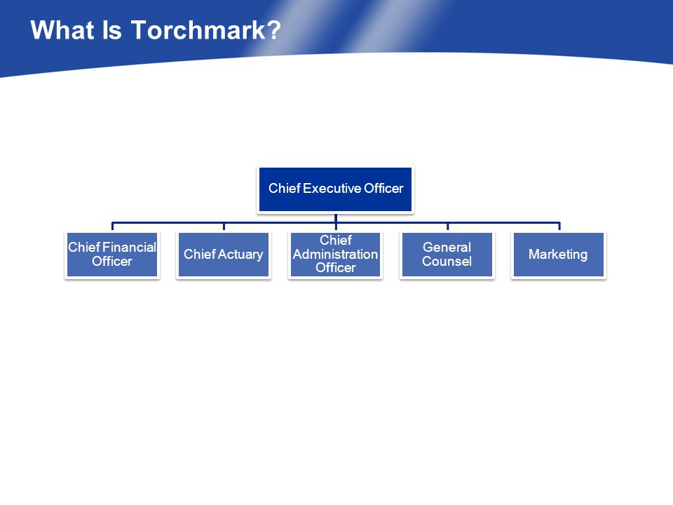 What Is Torchmark?