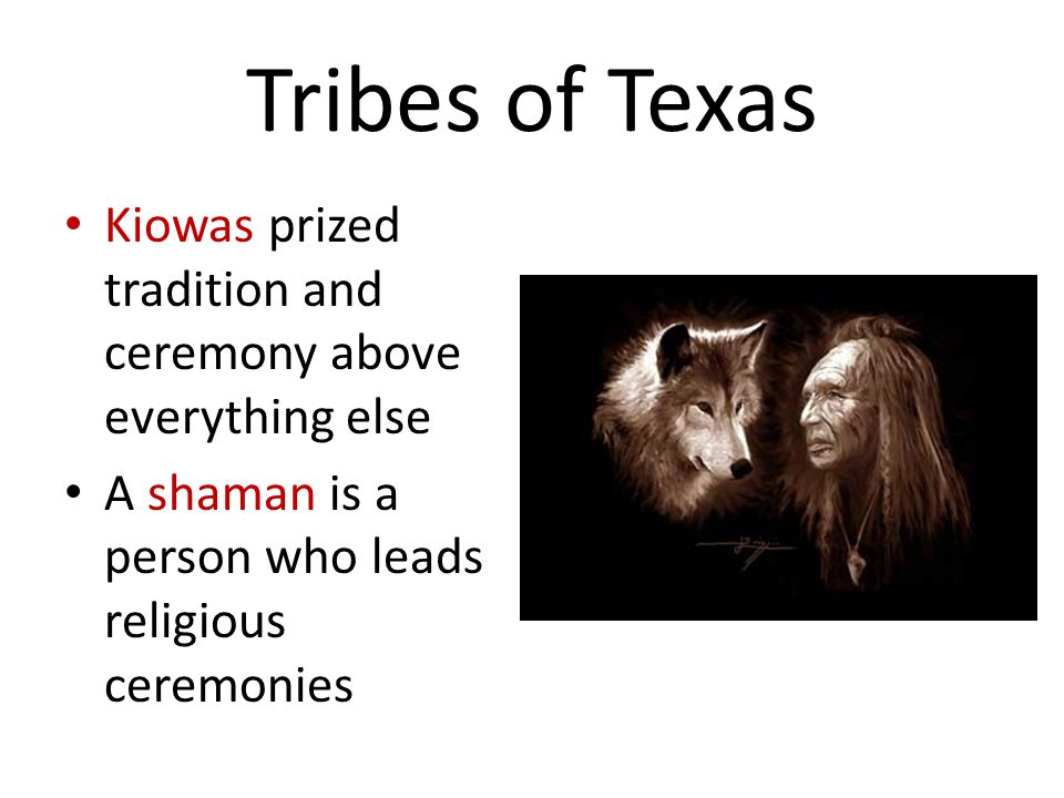 Tribes of Texas Kiowas prized tradition and ceremony above everything else A shaman is a person who leads religious ceremonies