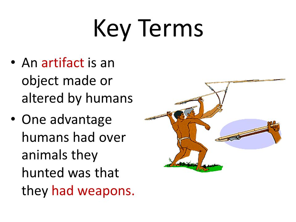 Key Terms An artifact is an object made or altered by humans One advantage humans had over animals they hunted was that they had weapons.