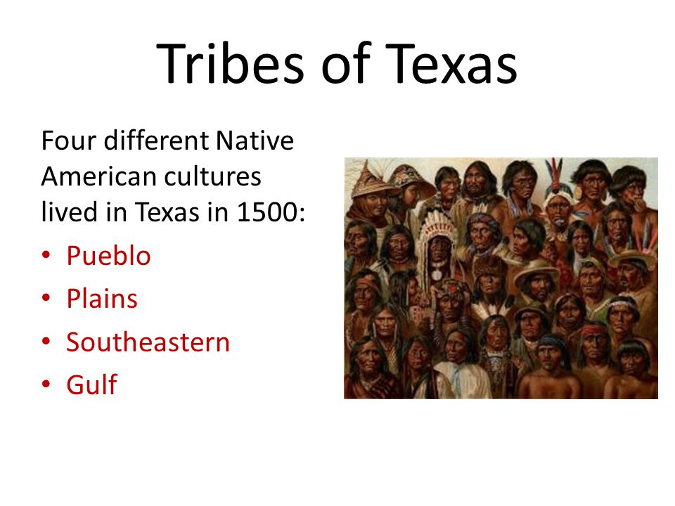 Tribes of Texas Four different Native American cultures lived in Texas in 1500: Pueblo Plains Southeastern Gulf