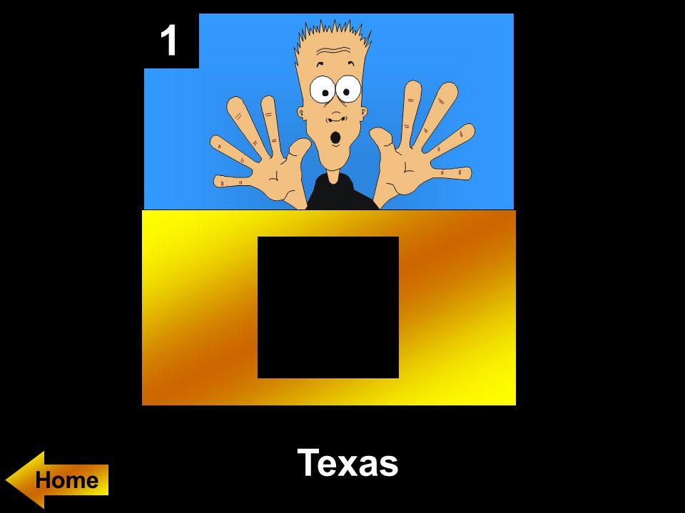 1 Texas Home