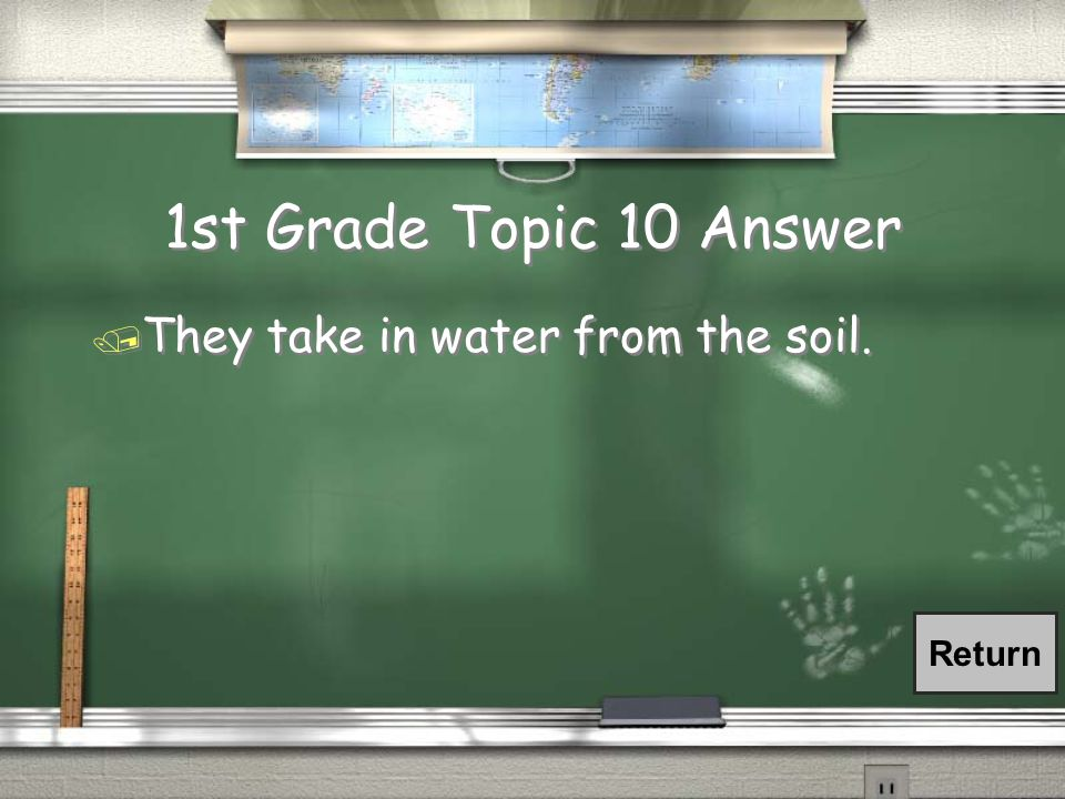 1st Grade Topic 10 Question / What is the main job the roots of a plant have