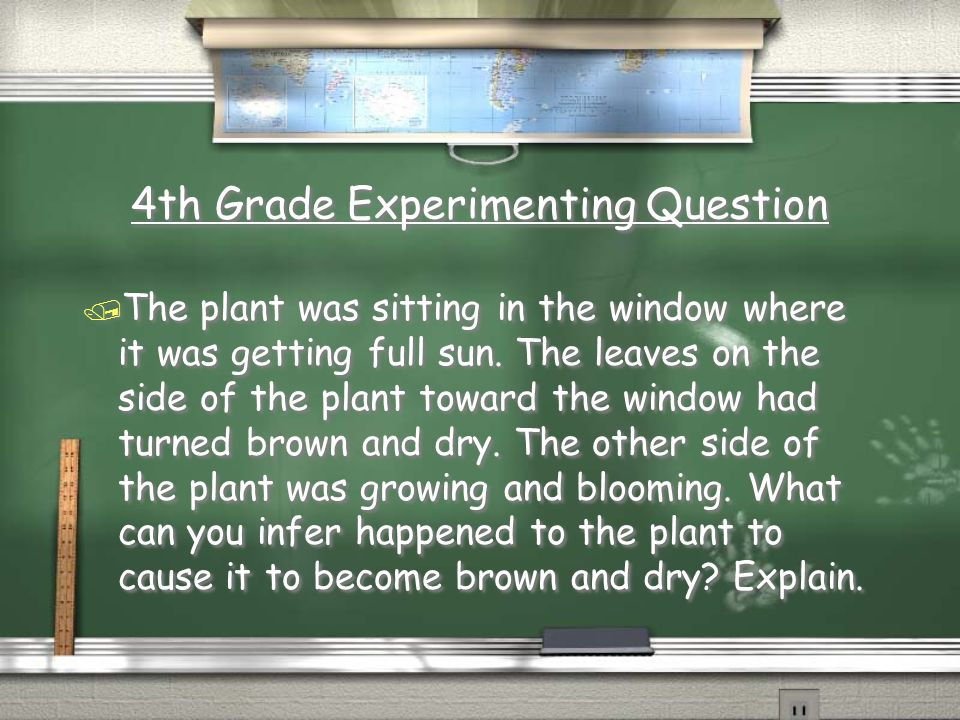 4th Grade Scientific Method Answer / Restate the hypothesis, was the hypothesis correct.