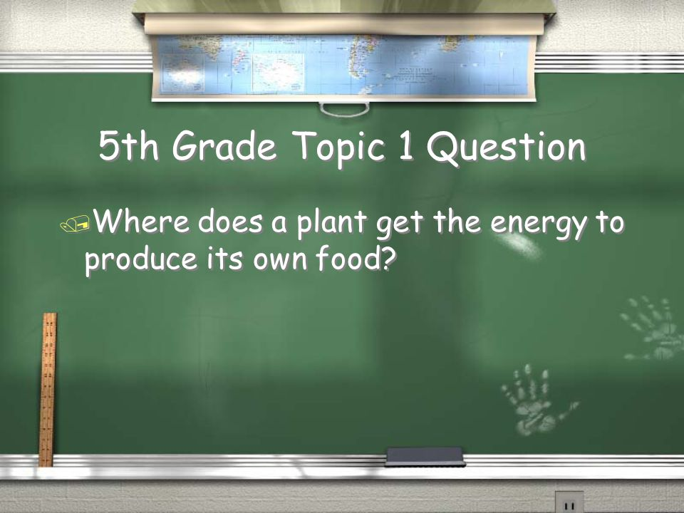 5th Grade Topic 1 Question / Where does a plant get the energy to produce its own food?