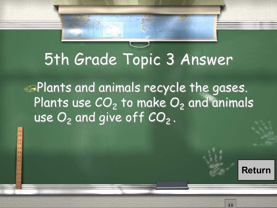 5th Grade Topic 3 Answer / Plants and animals recycle the gases.