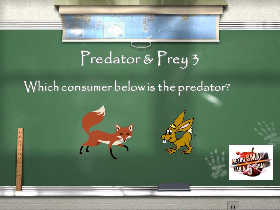Predator & Prey 2 What are consumers that eat prey?