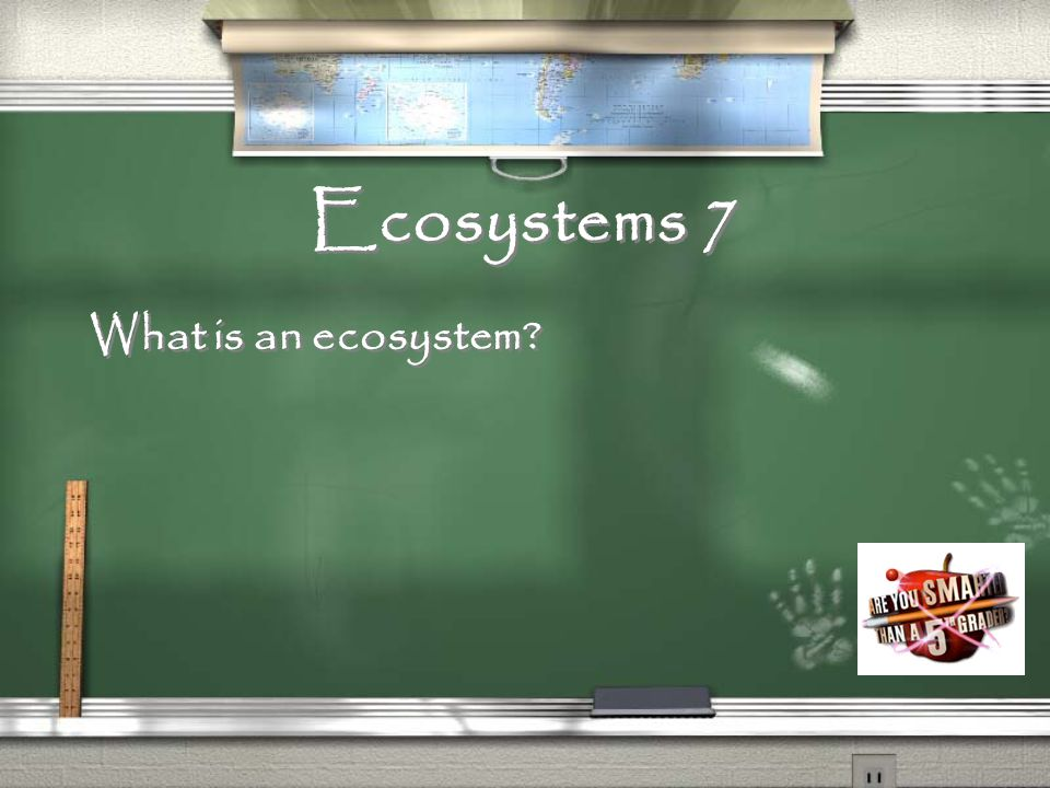 Ecosystems 6 What are the living and nonliving things in an environment called?