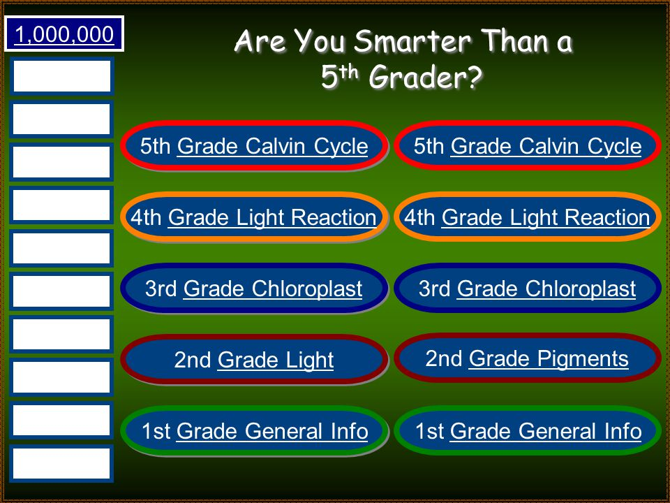 Are You Smarter Than a 5 th Grader? Photosynthesis