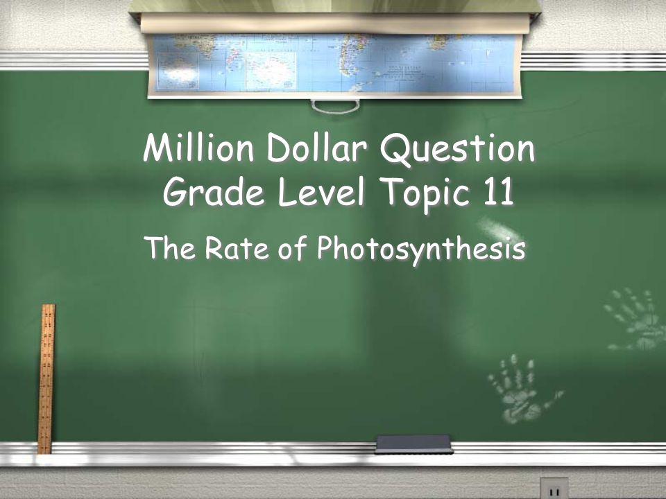 1st Grade Topic 10 Answer / Heterotrophs Return