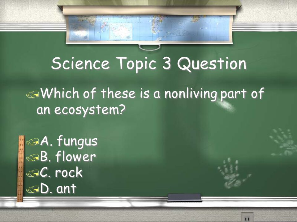 Science Topic 8 Question / Which of the following statements about a light bulb is not true.