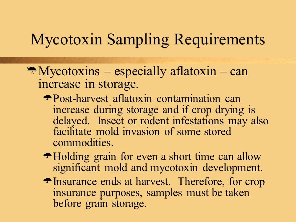 Mycotoxin Sampling Requirements  Mycotoxins – especially aflatoxin – can increase in storage.
