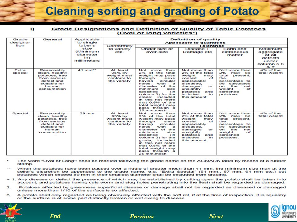 Next End Previous Cleaning sorting and grading of Potato