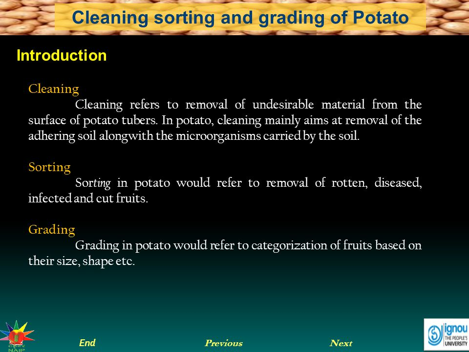 Next End Previous Cleaning sorting and grading of Potato Sequence of operation in potato Harvesting Drying Curing Grading Sorting Storage and marketing Consumer