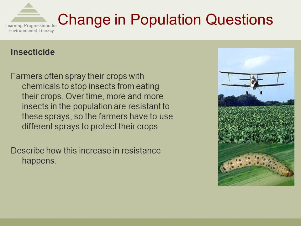 Learning Progressions for Environmental Literacy Change in Population Questions Insecticide Farmers often spray their crops with chemicals to stop insects from eating their crops.