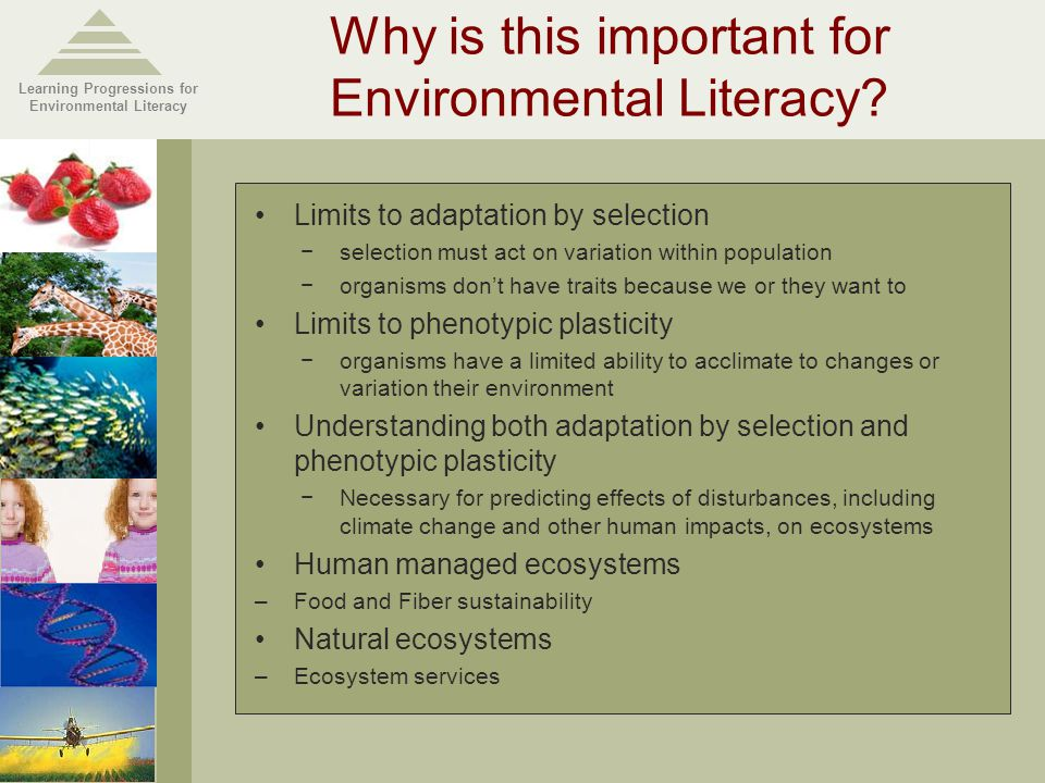 Learning Progressions for Environmental Literacy Why is this important for Environmental Literacy.