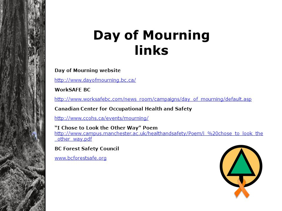Day of Mourning website http://www.dayofmourning.bc.ca/ WorkSAFE BC http://www.worksafebc.com/news_room/campaigns/day_of_mourning/default.asp Canadian Center for Occupational Health and Safety http://www.ccohs.ca/events/mourning/ I Chose to Look the Other Way Poem http://www.campus.manchester.ac.uk/healthandsafety/Poem/i_%20chose_to_look_the _other_way.pdf http://www.campus.manchester.ac.uk/healthandsafety/Poem/i_%20chose_to_look_the _other_way.pdf BC Forest Safety Council www.bcforestsafe.org Day of Mourning links