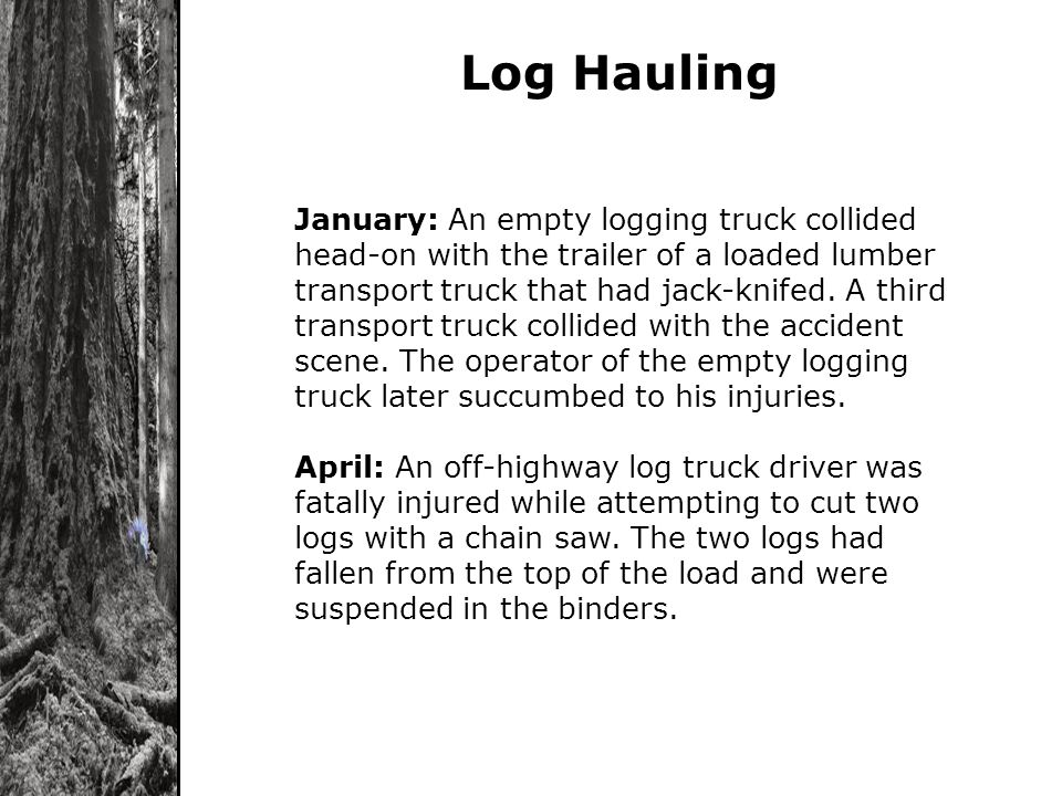 Log Hauling January: An empty logging truck collided head-on with the trailer of a loaded lumber transport truck that had jack-knifed. A third transpo